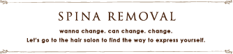 SPINA REMOVAL MENU